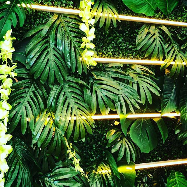 Had a great time making this sweet foliage and neon piece for @lululemonchi. Seriously if anyone needs more leafy neon things, I am so down. I love this kind of stuff! (Also thank you to my assistant, who is also my mom) / #lululemon #tropical #leaves #installationart #installation #neon #windowdisplay #foliage #green