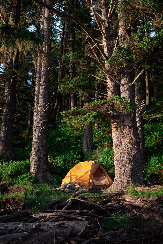June 8, 2018 - Andrew Tat - Ozette, Washington - Backpacking, Outdoors - 11.JPG
