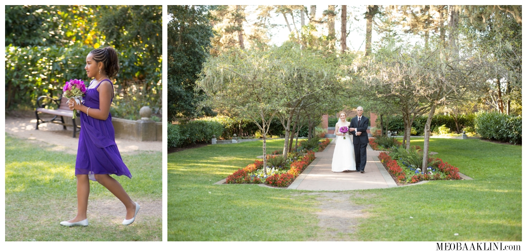 San Francisco Shakespeare Garden Wedding Elopement Photographer_0012