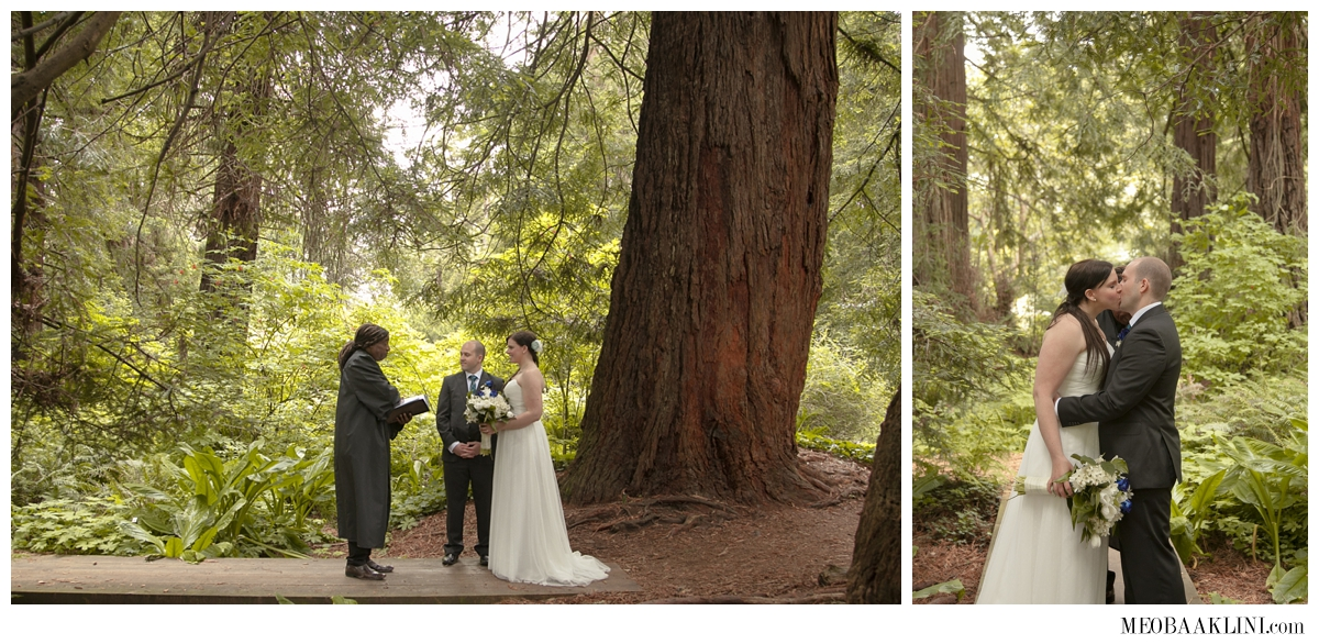 San Francisco Elopement Wedding Photographer_0007