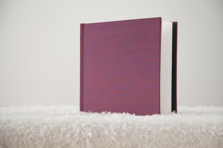 ProDPI Raspberry 8x8 Layflat Book-1.jpg