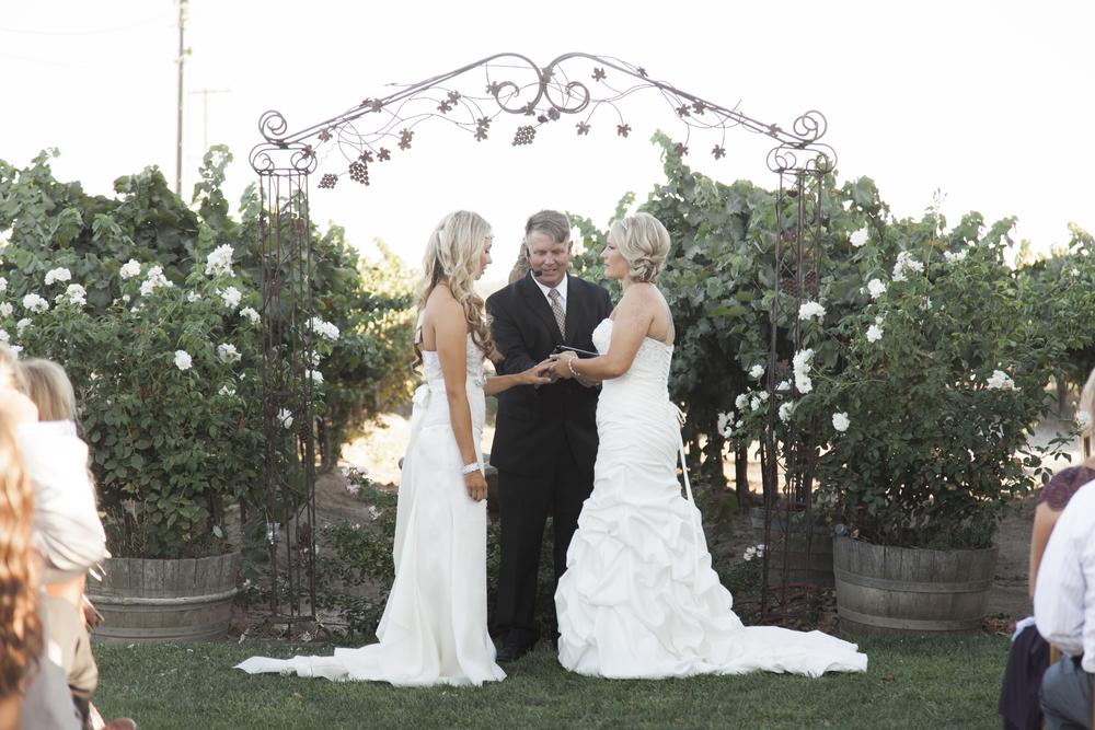 Sacramento Wedding Photographer-LGBT-Scibner Bend-75.jpg