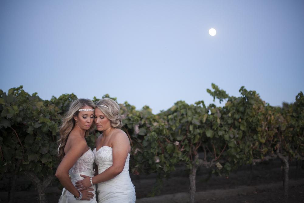 Sacramento Wedding Photographer-LGBT-Scibner Bend-89.jpg