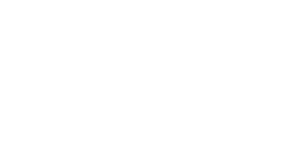 World Premiere at the Seattle International Film Festival (May/June 2018) -