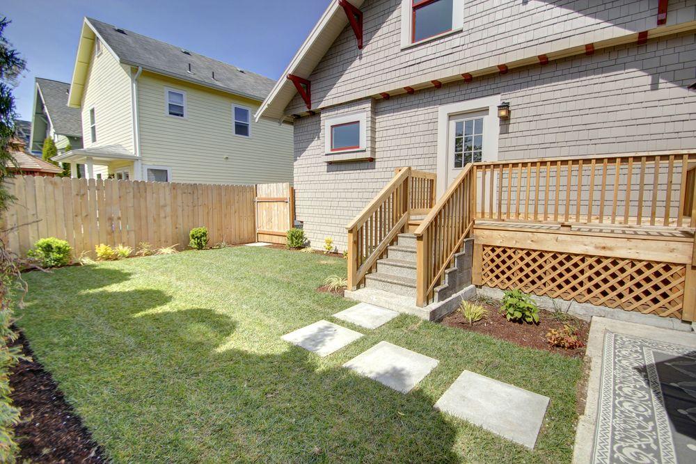 backyard6.jpg