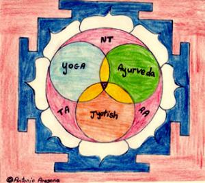 My_Logo_e.jpg