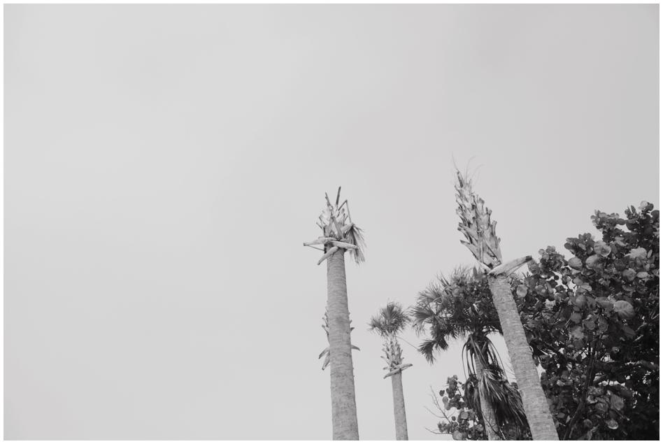 2014-04-04_0001