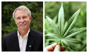 Governor John Kitzhaber claimed an unprecedented fourth term without a majority, and the measure that gained the widest national headlines was approval of Measure 91 to legalize the use, sale and production of marijuana.