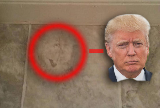 A Virginia man who supports Donald Trump for president swears he saw his candidate's face on a bathroom floor while sitting on his toilet. It wasn't the weirdest thing in the whacky world of politics.