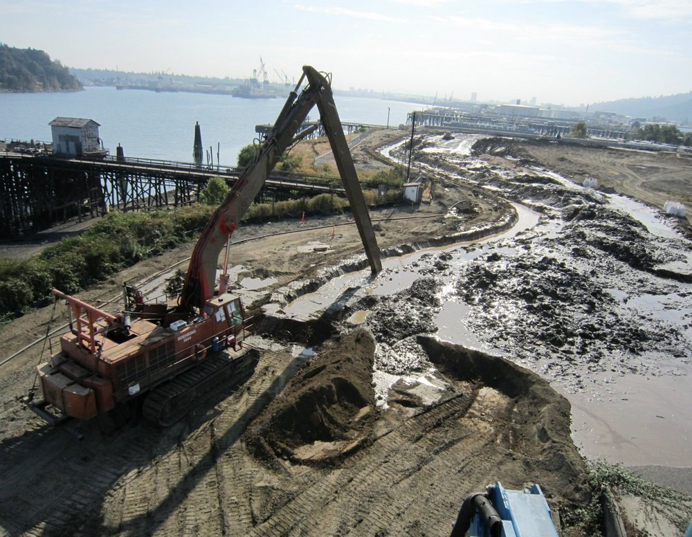 The business and public agencies criticized an earlier EPA cost estimate to clean up the Portland Harbor Superfund site as too high. Now they worry a revised estimate is too low, while environmental activists think the EPA plan doesn't go far enough. (Photo courtesy: The Oregonian/Oregonlive)