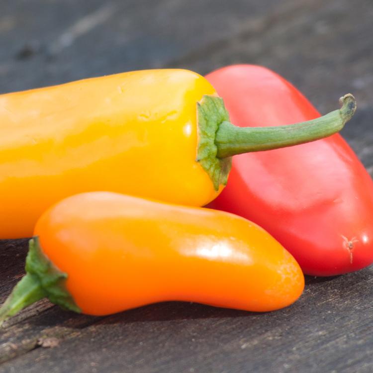 Peppers photographed by Katie Vandyck.jpg