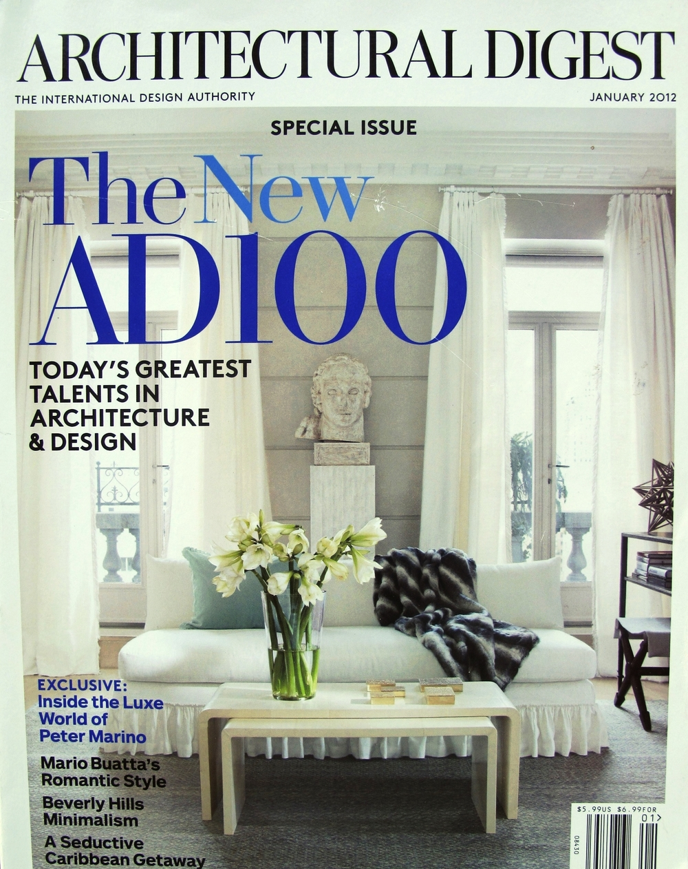 AD100 cover.JPG