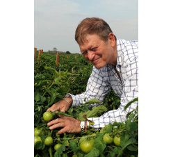 Tomato prices could stay high through June, said Chuck Weisinger, president and chief executive officer of Fort Myers, Fla.-based Weis-Buy Farms Inc.