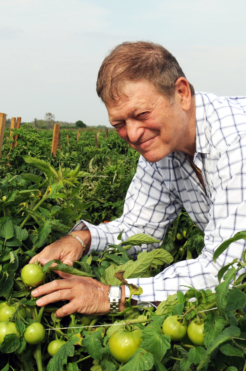 Chuck Weisinger of Weis-Buy Farms Inc. looks through the Florida tomato fields with a smile.