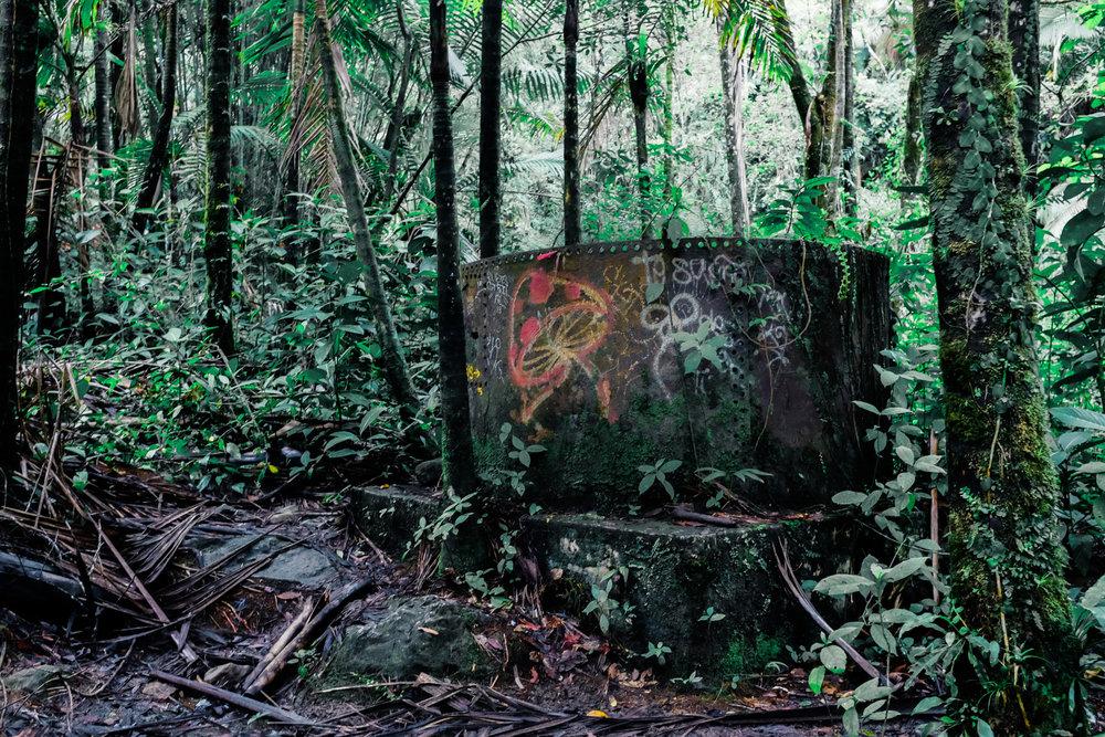 Lost-4114.jpg