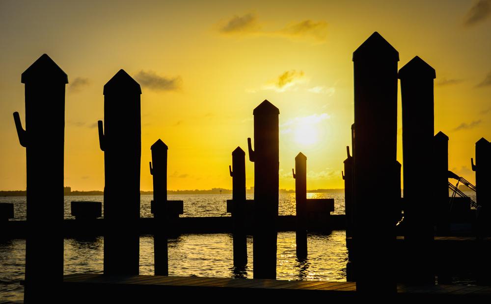 Docks Bathed in Gold - Leslie Brown