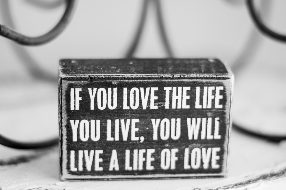 Love your Life - Leslie Brown