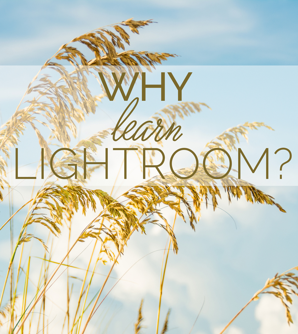 Learn Lightroom - Leslie Brown