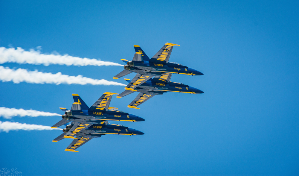 Blue Angels - Leslie Brown