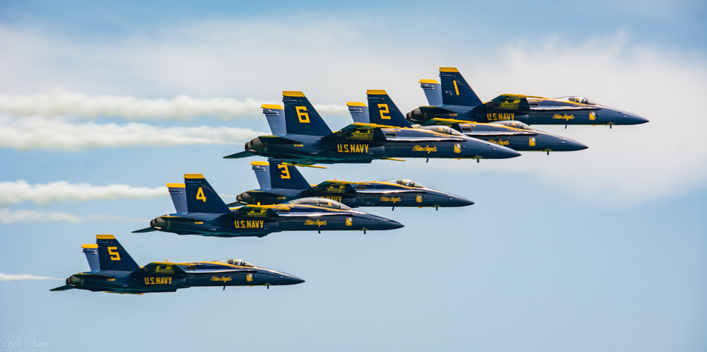 All 6 Blue Angels - Leslie Brown