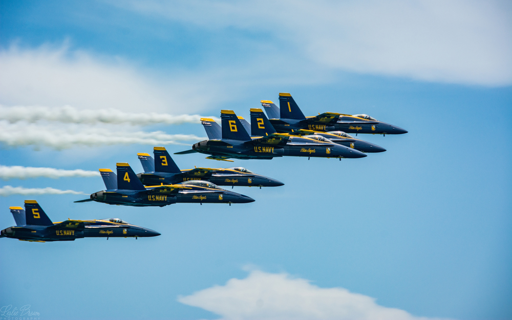 Blue Angels 6 - Leslie Brown