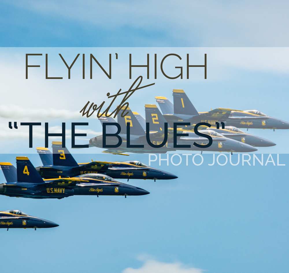 The Blue Angels Pensacola - Leslie Brown