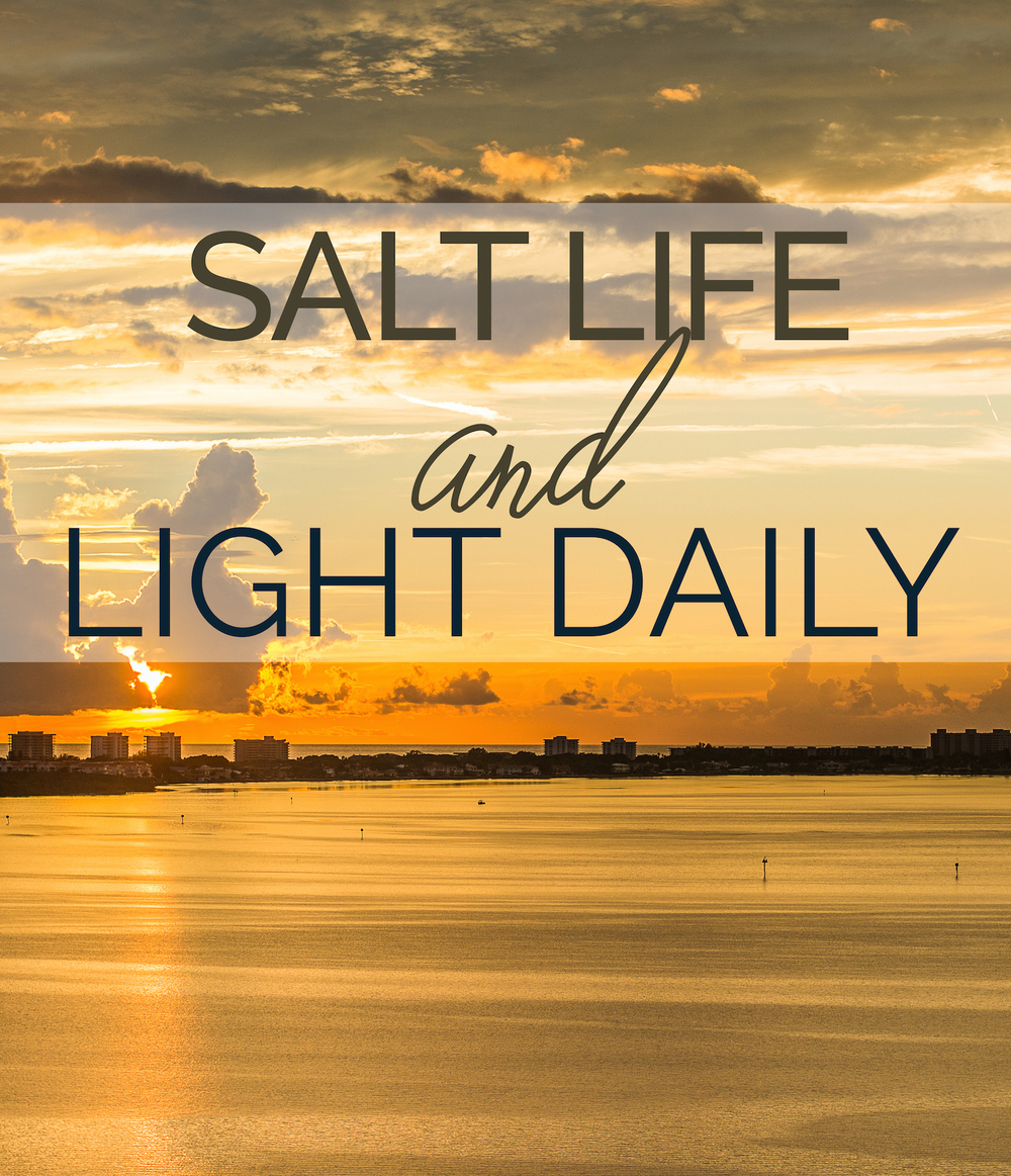 Salt Life and Light Daily - Leslie Brown