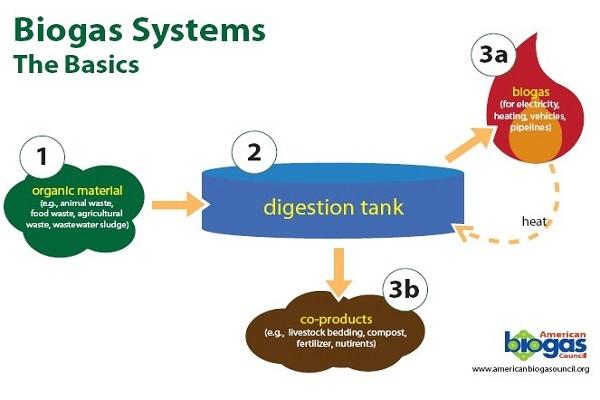Biogas basics