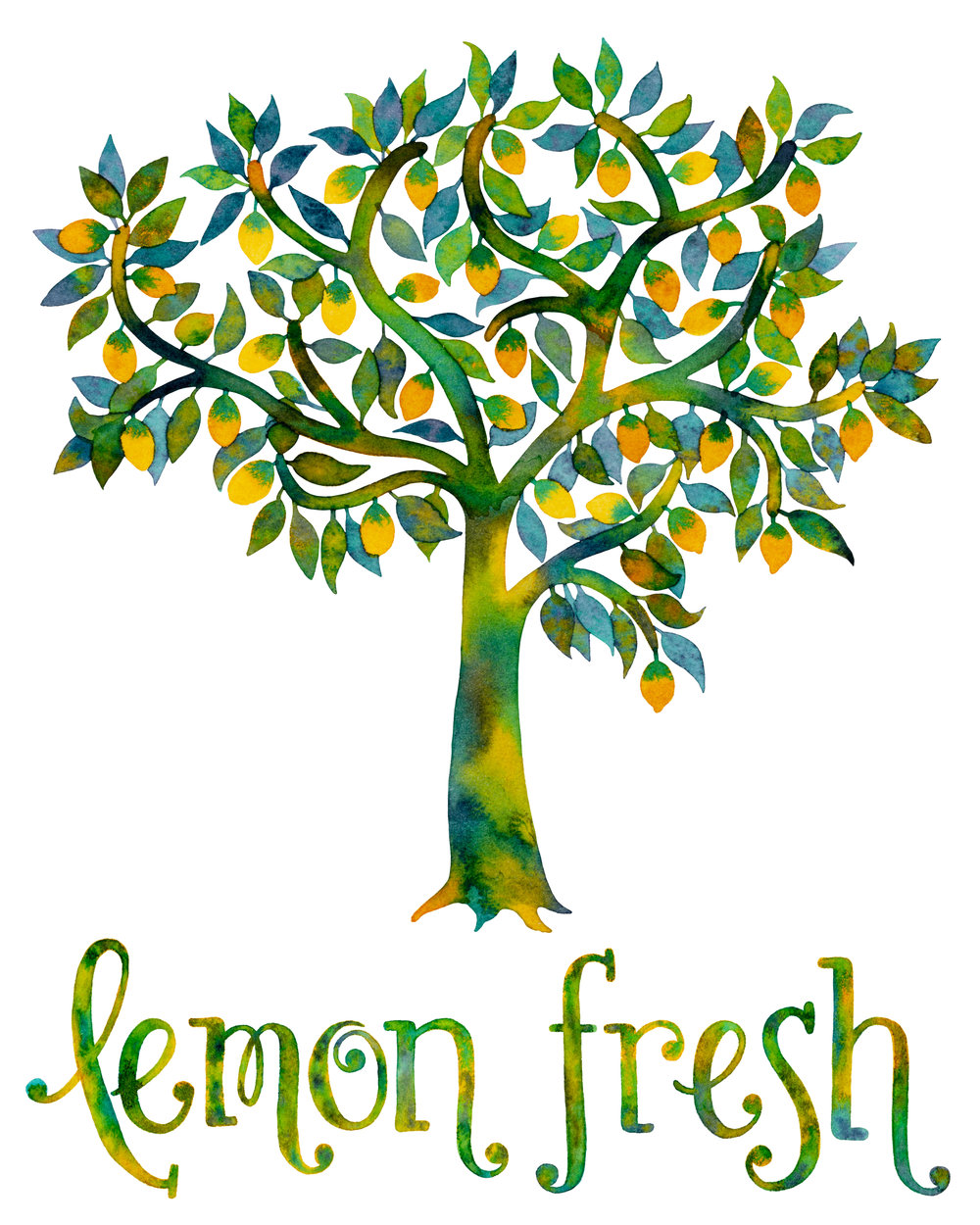 lemonfreshtreeweb.jpg