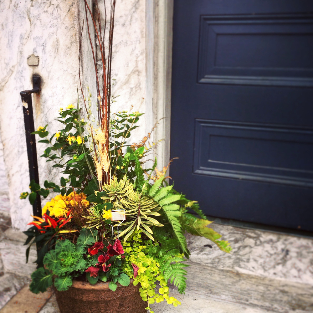 Brightly colored fall planter looks excellent next to this navy blue door in Philadelphia's Wash West neighborhood