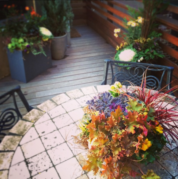 Back porch in Rittenhouse is ready for Thanksgiving