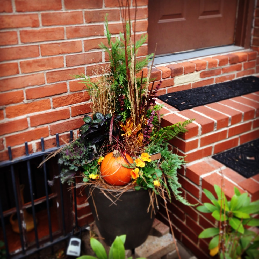 Rustic fall planter on Rodman Street