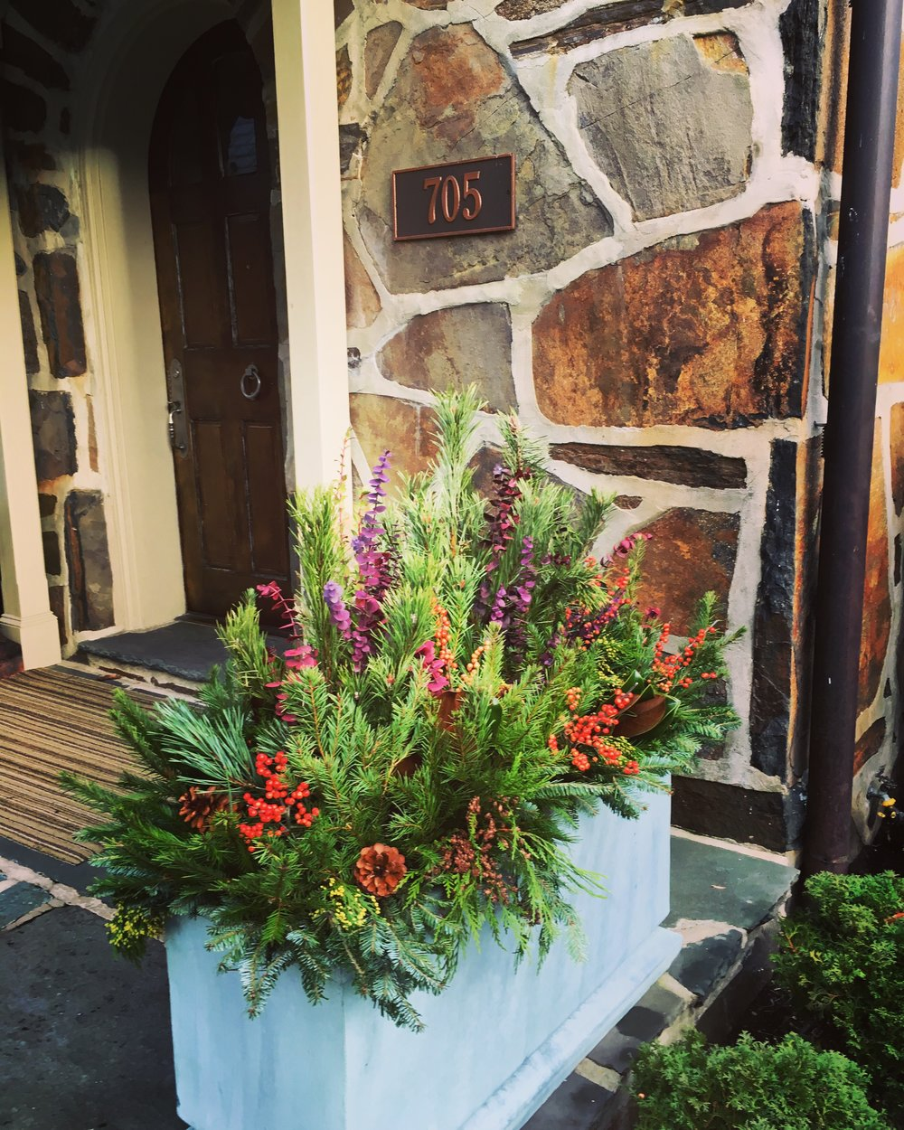 holiday planter dresses up this front door in gladwyne
