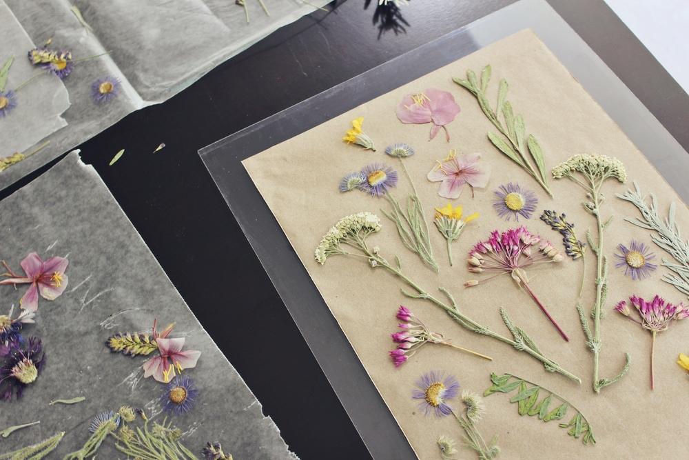 arrangethepressedflowers