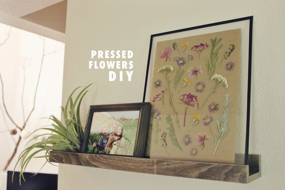 Diy Pressed Flowers In Float Frame Emorie Kidder
