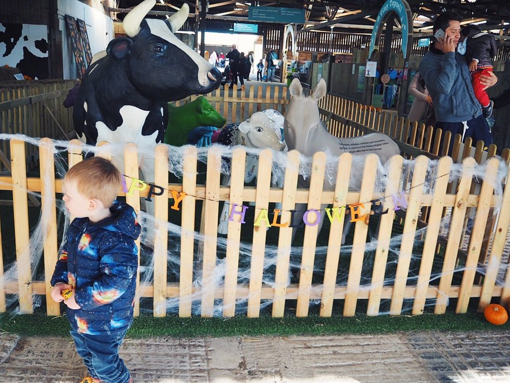 Toddler Friendly Getaways : Tapnell Farm