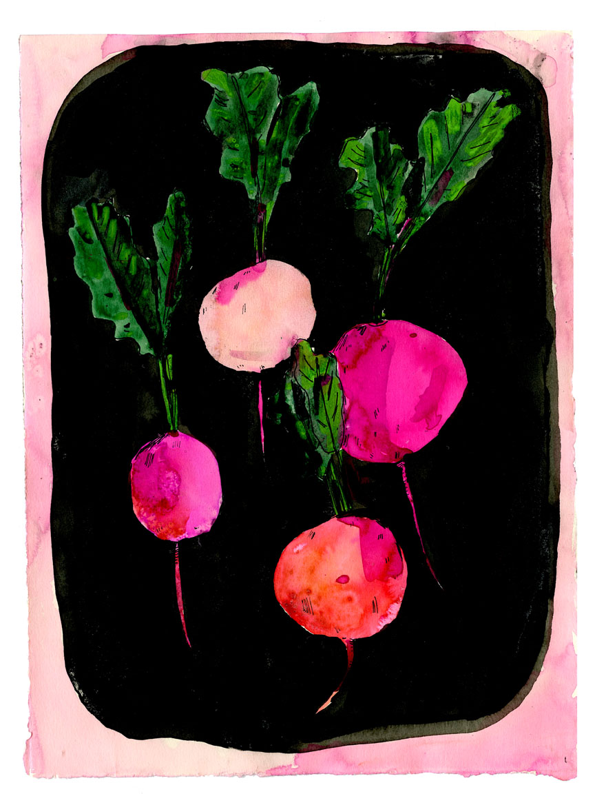 Rainbow radishes original artwork for sale in the shop!