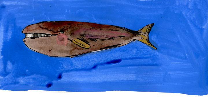 whale11-small.jpg