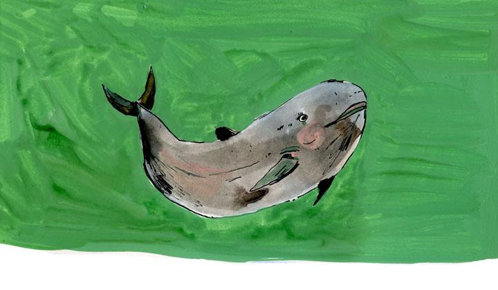 whale9-small.jpg