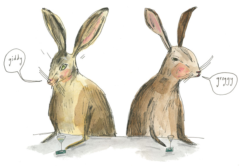 two rabbits illustration