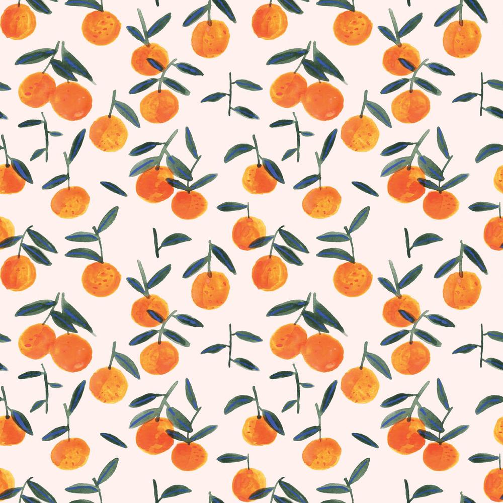 clementine peach wallpaper sample.jpg
