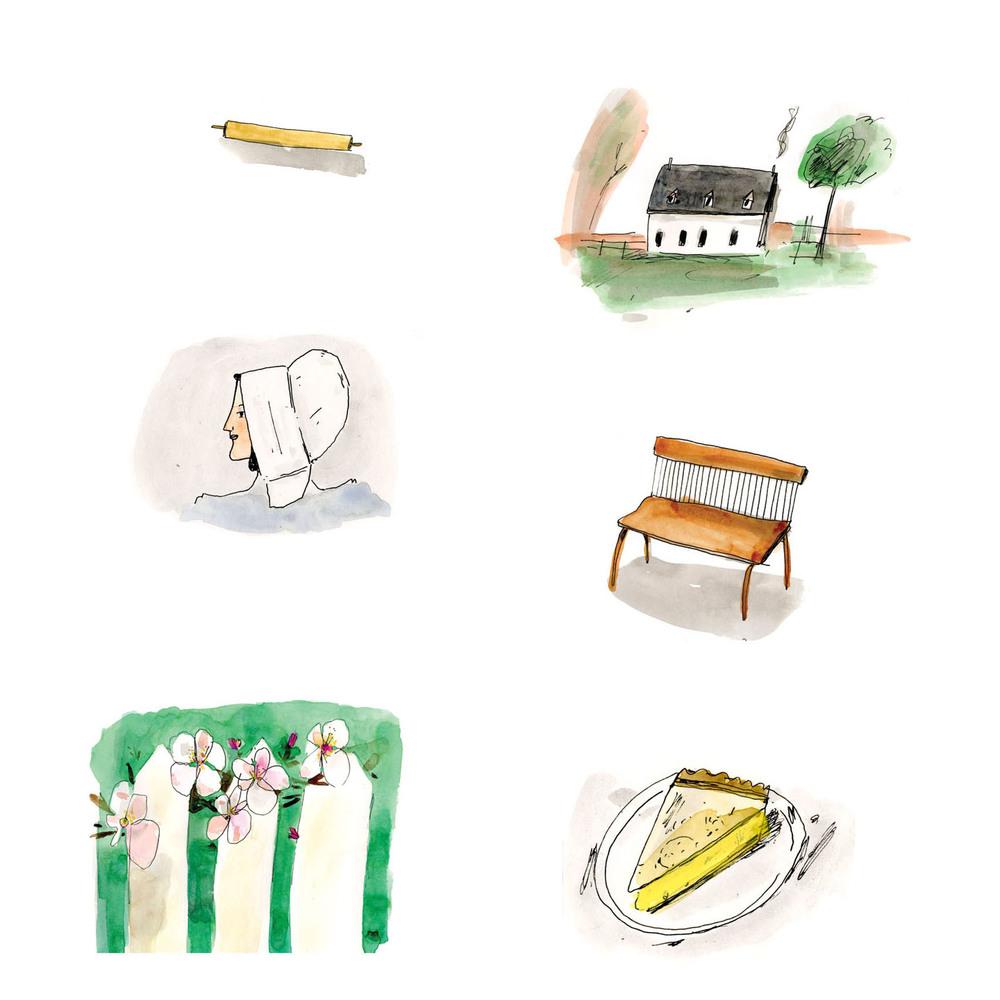 Ecotone illustrations.jpg