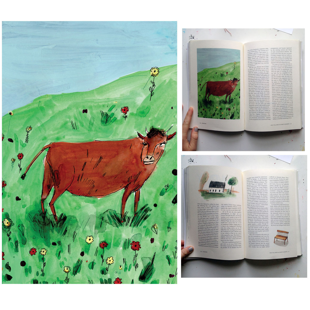 Ecotone illustrations2.jpg