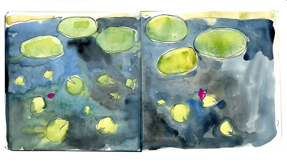 Kenilworth Aquatic Gardens illustration