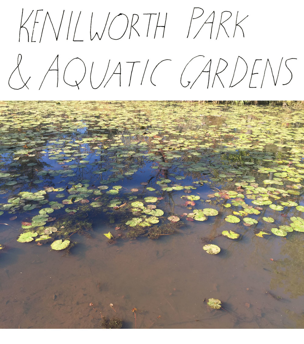 Kenilworth Aquatic Garden
