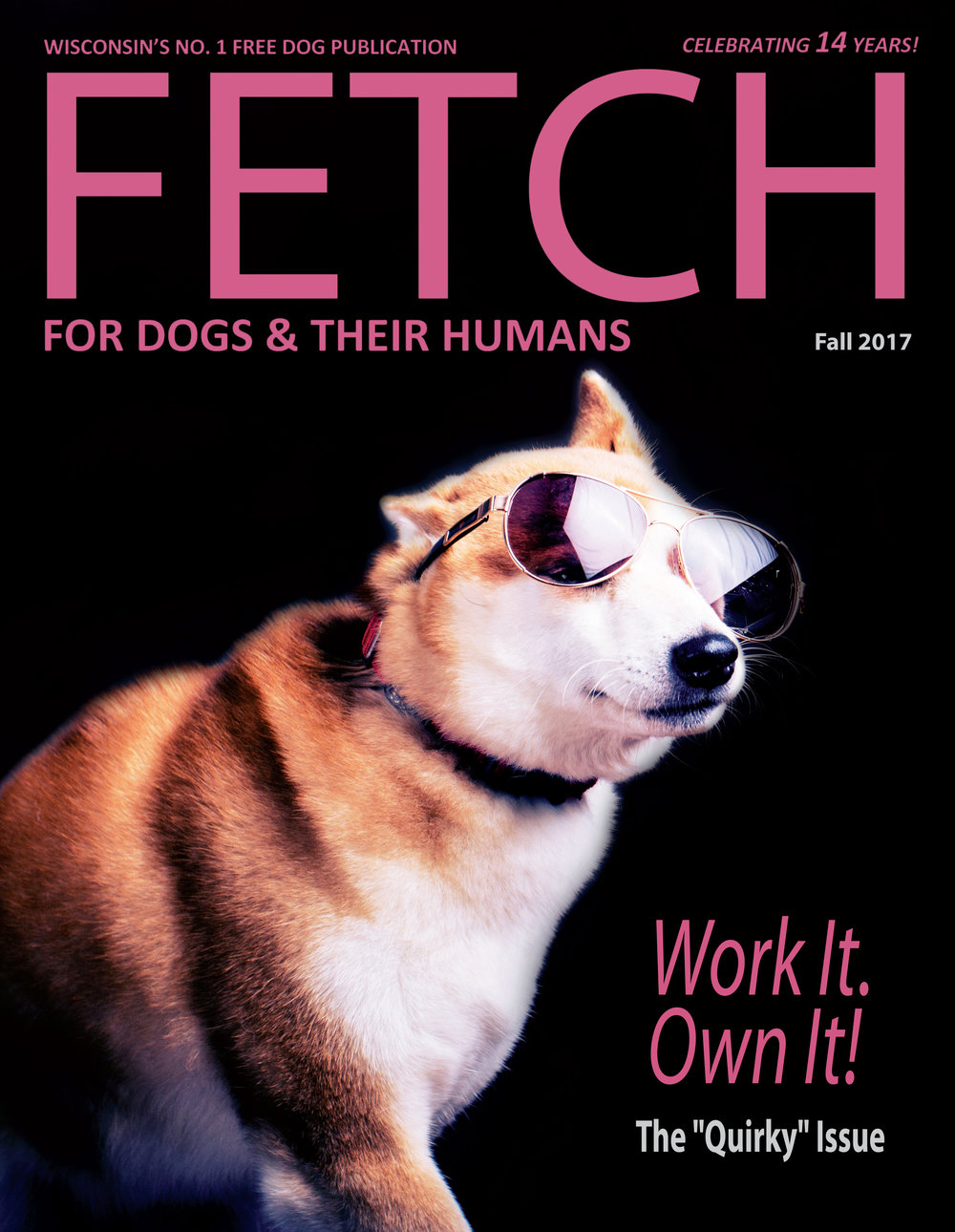 FETCH FALL COVER.jpg