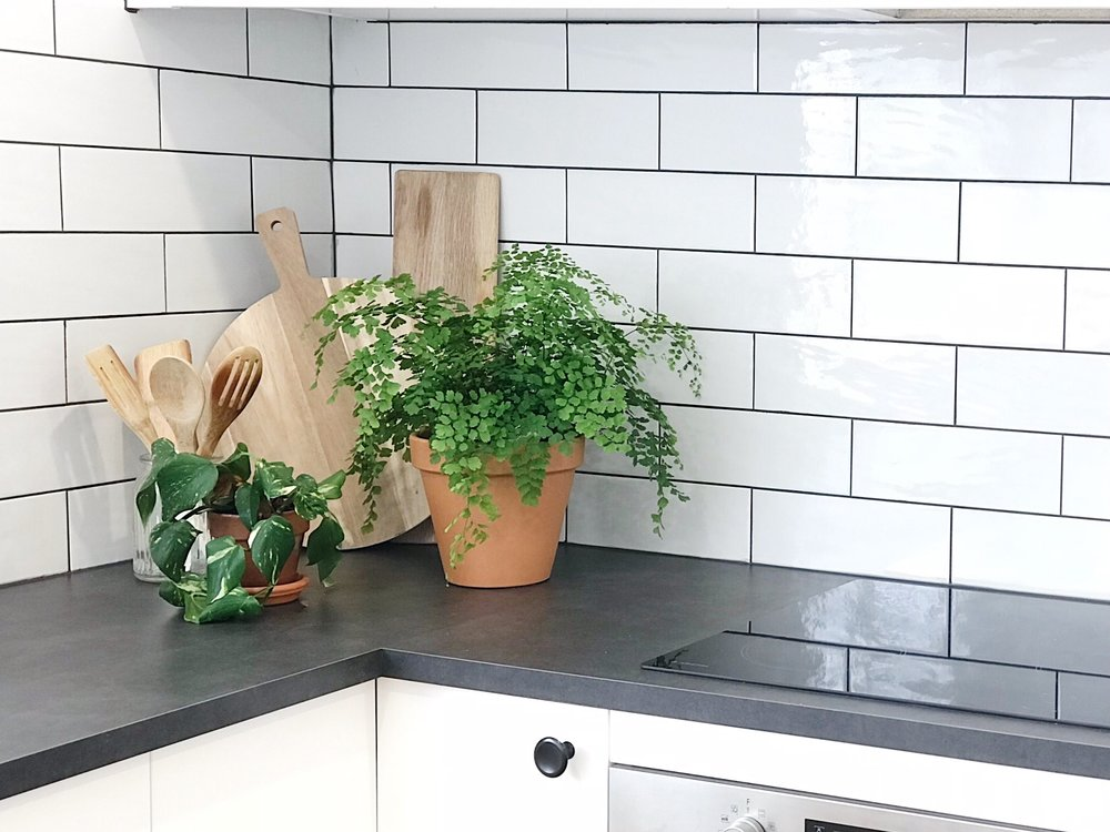 Pearson + Project The Rookies Kitchen Reveal Cooktop Subway Tiles Styling.jpg