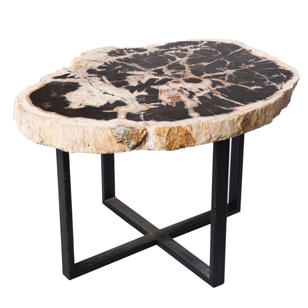 Petrified wood upper west side table pf 1041 a i r e for Furniture stores upper west side