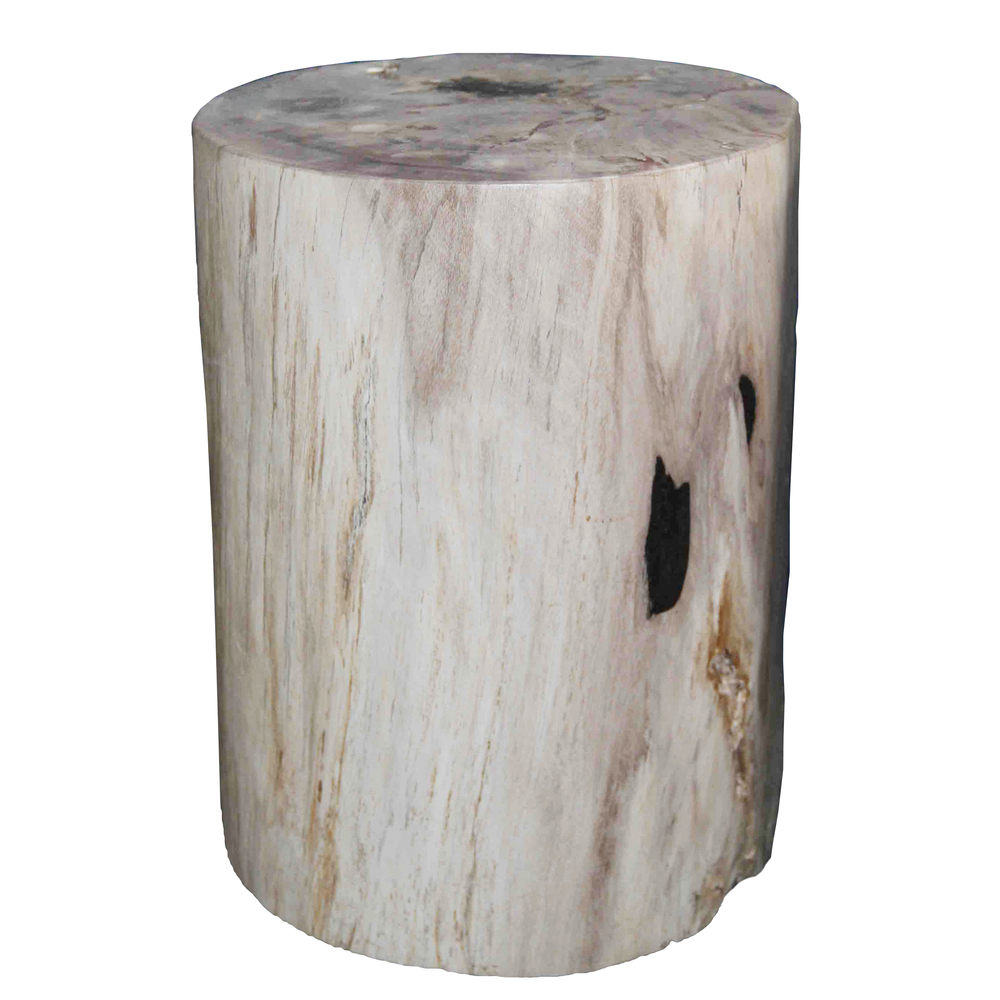 Petrified Wood Stool PF-2020  sc 1 st  AIRE : wooden stump stool - islam-shia.org