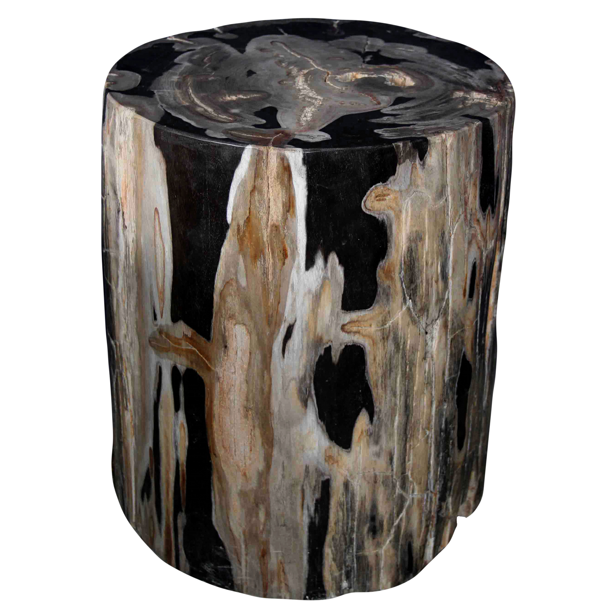 Petrified Wood Log Stool PF 2042